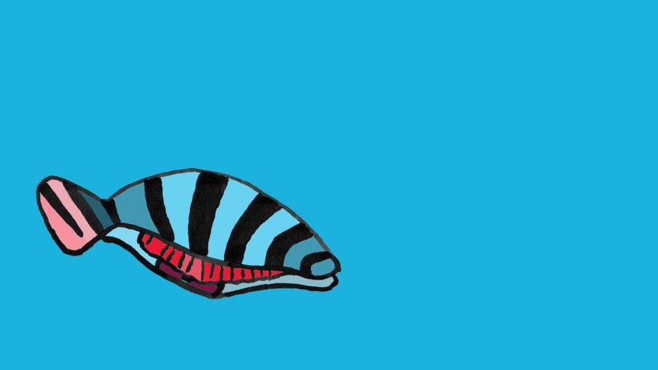 fisk5